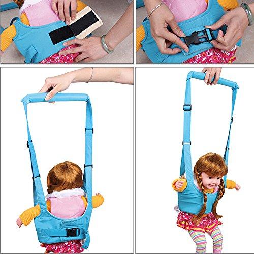 8d113a640f9e LQZ(TM) Bébé enfant harnais sécurité marche porte apprentissage aide  ceinture sangle (Bleu Foncé)  Amazon.fr  Bébés   Puériculture