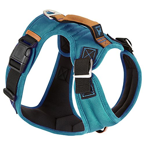 (Gooby - Pioneer Dog Harness, Small Dog Head-in Harness with Control Handle and Seat Belt Restrain Captability, Turquoise, X-Large )