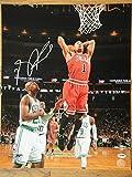 Derrick Rose - PSA/DNA Certified Autographed 16x20 Photo Mint Autograph Chicago Bulls Mvp