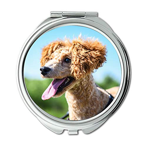 Mirror,Travel Mirror,Pets Teddy Puppy Walking The Dog Animal,Pocket Mirror,Portable Mirror