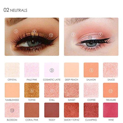 DZT1968 FOCALLURE 18 pearl Colors 3 types Pearlized Eyeshadow Powder EyeShadow Palette Set (B)