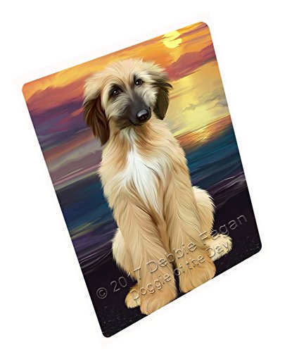 Amazon.com: Afghan Hound Dog Blanket BLNKT51672 (50x60