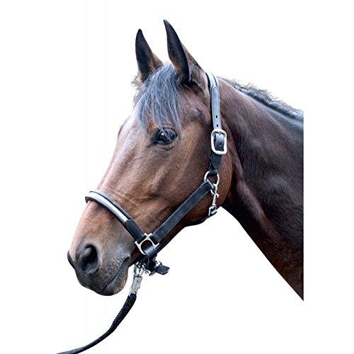 ordinare on-line Cavezza in pelle pelle pelle Fabienne Marronee Cavallo  economico e di alta qualità