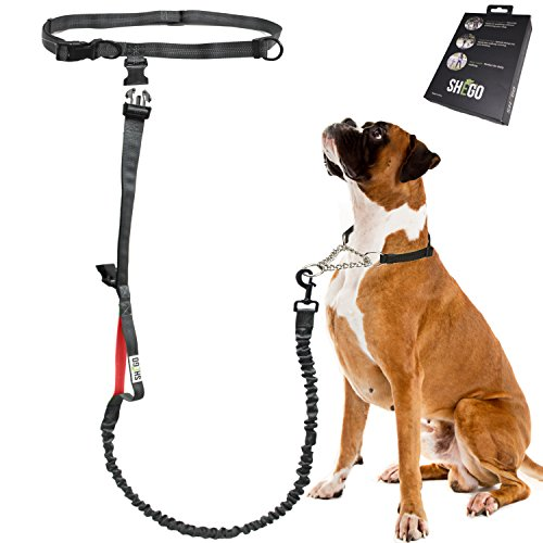 Bungee Dog (Hands Free Dog Leash for Running, Walking, Jogging and Hiking, Durable Bungee Leash Length 54