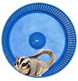 Sugar Glider Wheel--Freedom Stealth Wheel; Blue with Xmount