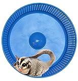 Sugar Glider Wheel--Freedom Stealth Wheel; Blue with Xmount