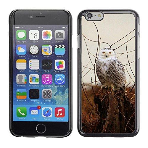 "Hülle Case Schutzhülle Cover Premium Case // F00000014 Schneebedeckt // Apple iPhone 6 6S 6G PLUS 5.5"""