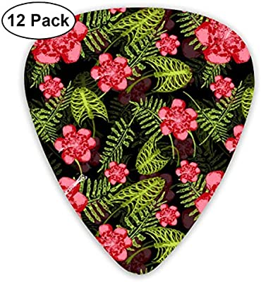 Death In Paradise 2_3530 Classic Celluloid Picks, 12-Pack, For Electric Guitar, Acoustic Guitar, Mandolin, And Bass: Amazon.es: Instrumentos musicales
