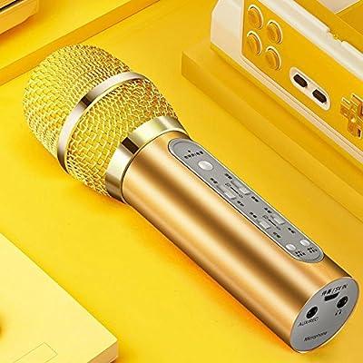 Tcaijing Micrófonos inalámbricos Micrófono, micrófono en Vivo ...