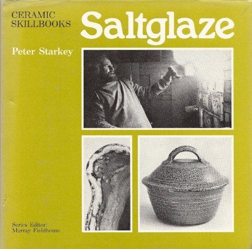 Salt-glaze (Ceramic skillbooks) by Peter Starkey (1977-06-26)