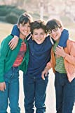 Erthstore 11x17 inch Wall Poster of The Wonder Years Fred Savage Danica McKellar Jason Hervey