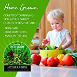 Lettuce and Greens Seed Vault - Non-GMO Seeds for