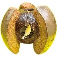 Hamiledyi Bird Nest Natural Coconut House Parrot Hideout Toy for Parakeet Finch Nesting Box Breeding Nest