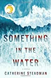 img - for Something in the Water: A Novel book / textbook / text book