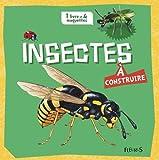 Insectes à construire