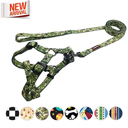 ess and Leash Set Durable Nylon Pet No Pull Dog Basic Halter Harness for XXS XS Extra Small Puppy 5-11lb Adjustable Chest:12-18inch Girl Boy ()