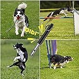 2 Pack Dog Whistle, Ultrasonic Dog Whistle Silent