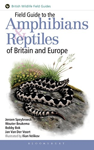 Field Guide to the Amphibians and Reptiles of Britain and Europe (Helm Field Guides)