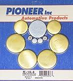 Pioneer PE119B Brass Freeze Plug Kit