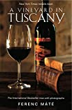 A Vineyard in Tuscany: Illustrated Edition