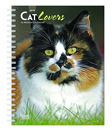 Cat Lovers 2019 6 x 7.75 Inch Weekly Engagement Calendar, Animals Domestic Cats