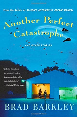 book cover of Another Perfect Catastrophe
