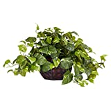 Nearly Natural 6681 15in. Pothos with Decorative Vase Silk Plant