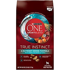 Purina ONE SmartBlend True Instinct with Real Salmon & Tuna NATURAL Adult Adult Dry Food - (6) 3.8 lb. Bag