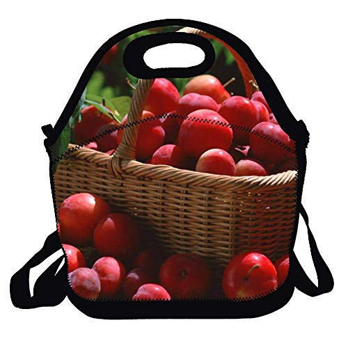 (Lunchbox for School Work Plum Picture Lunch Bag for Kids Lunch Bag Lunch Box Food Bag Fashion Home )