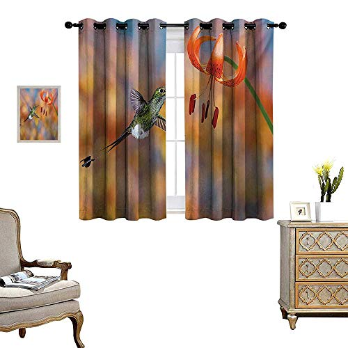 Hummingbird Window Curtain Fabric The Booted Racket Tail Feeding Nectar from Tiger Lily Blur Background Photo Drapes for Living Room W63 x L72 Orange Green (Tiger Drapes Lily)