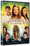 La Rosa De Guadalupe Vol. 2