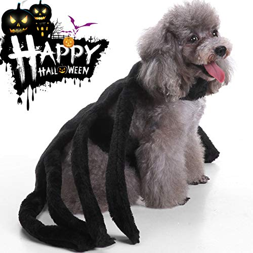 Halloween Decoration Cleara Dogs Cats,Halloween Party Spider Skeleton
