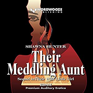 Their Meddling Aunt Audiobook