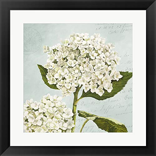 (Hydrangeas II (Aqua) by Remy Dellal Framed Art Print Wall Picture, Flat Black Frame, 20 x 20 inches)
