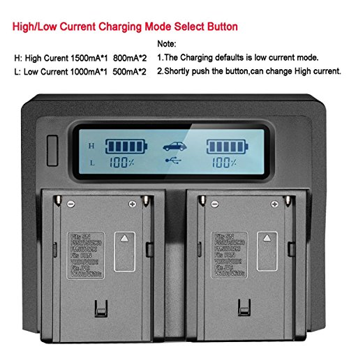 SR SUN ROOM NEW Dual Channel LCD Display Charger For Sony NP-F550 NP-F570 NP-F750 NP-F770 NP-F930 NP-F950 NP-F960 NP-F970 NP-FM55H NP-FM500H NP-QM71 NP-QM91 NP-QM71D NP-QM91D Camcorder Batteries