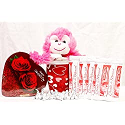 Valentines Day Student / Military Care Package - Swiss Miss Hot Chocolate - Hershey Kisses - Chocolate - Mug - Monkey