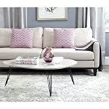 Safavieh Home Collection Wynton Taupe and Black Coffee Table For Sale