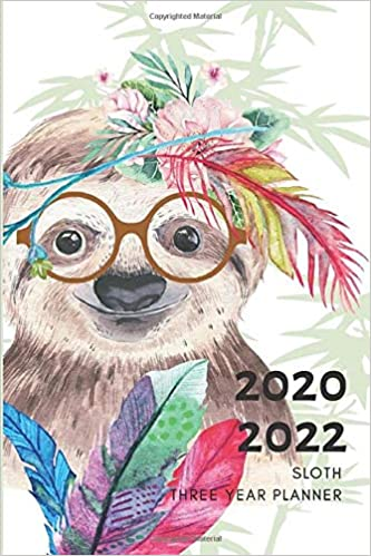 3 Year Planner 2020-2022 Sloth Watercolor Three Years ...