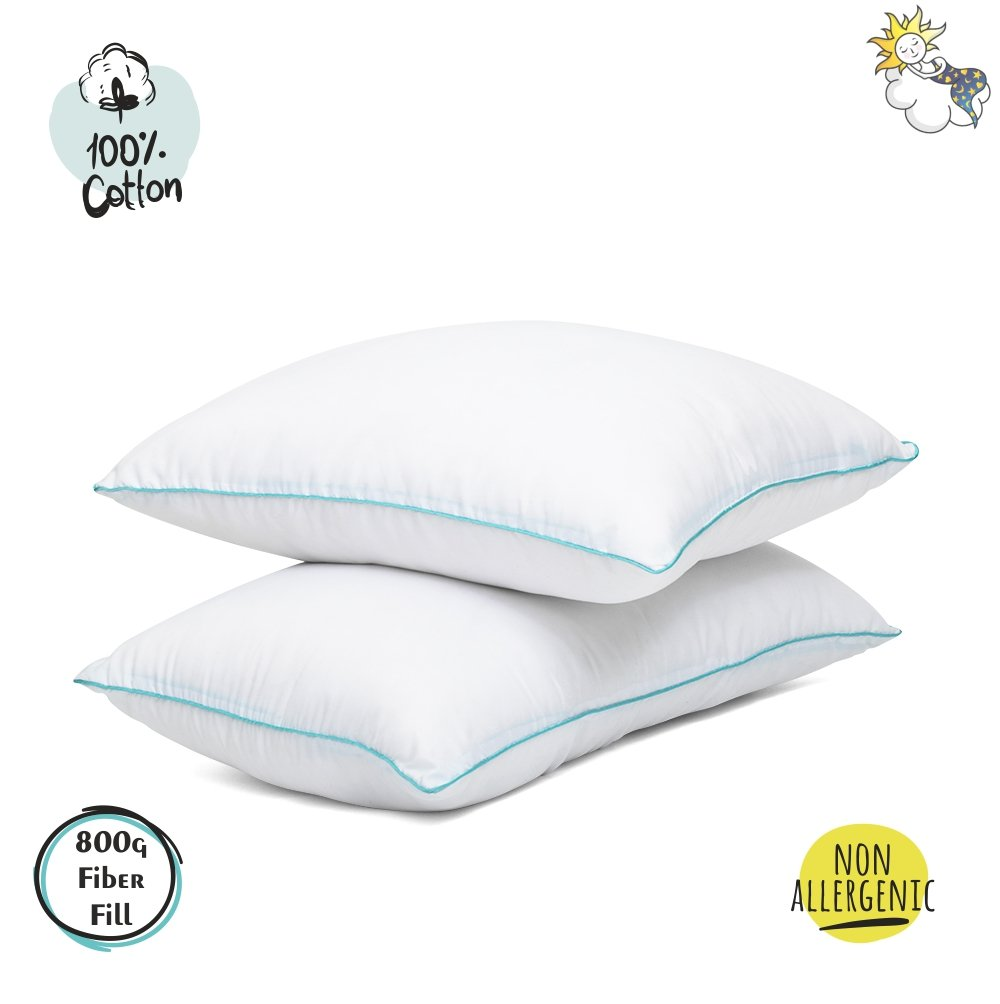 Luxury Bed Pillows For Sleeping 2 Pack Queen Standard Cool