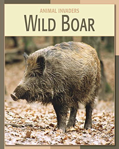 Wild Boar (21st Century Skills Library: Animal Invaders)