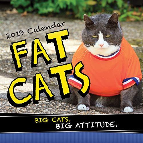2019 Fat Cats Wall Calendar