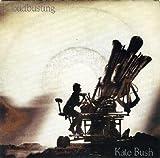 Cloudbusting [Vinyl]
