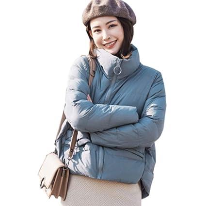 Abrigos Corto Abajo Pan Grueso de Invierno, versión Coreana de Chaqueta Suelta de algodón Traje