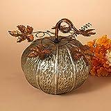 """GIL 2271030 9.5"""" D Metal Harvest Pumpkin Christmas, 9.6"""" L x 9.6"""" W x 10"""" H, Multicolor"""