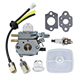 HUZTL Carburetor C1U-K29 C1U-K47 C1U-K52 with Repower Maintenance Kit for Echo GT200EZR GT2000R PAS2000 PAS2100 PE-2000 PP1200 PP800 PPF2100 PPF2110 PPSR2122 PPT2100 Power Pruner Trimmer