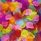 1000 Pieces Silk Rose Petals Wedding Party Flower Petals Decoration Artifical Petals (Colorful)