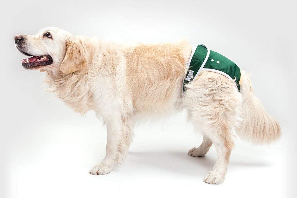 Small: Waist 45cm - 53cm, Hunter Green Washable Wonders Male Dog Nappy