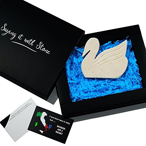 Stone Swan Perfect Birthday Gift - Symbol: Love & Unity - Elegant gift box with blank message card - stone with fossil fragments - birthday anniversary wedding wife husband girlfriend newlyweds (West Highland Terrier Poodle)