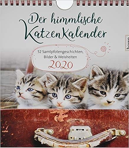 Der himmlische Katzenkalender 2020: 52 Samtpfotengeschichten, Bilder & Weisheiten