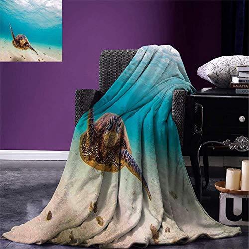 (MIGAGA Hawaiian Throw Blanket Underwater Scuba Diving Sea Turtle Nature Animal Swimming Wildlife Theme Velvet Plush Throw Blanket Blue Beige Brown)